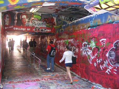 This once empty tunnel on the NC State campus is  now a product of street art. People may see this as vandalism but others see it as a product of expression.