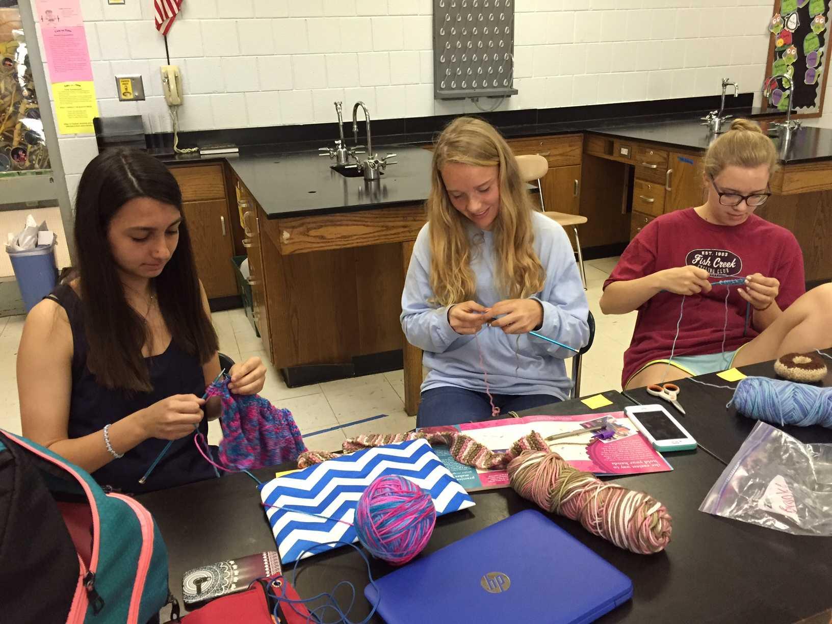 Knitting Club Of The Month : Knitting club cat talk