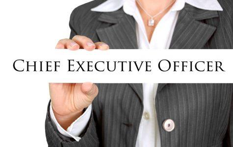 CEOs: 347 to 1