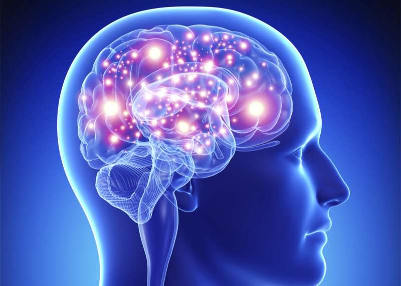 """Sending messages to the brain, dopamine helps our brain store our memory and control our mood and our sleep. High levels of dopamine seems to be one of the scientific hypotheses that try to explain deja vu and why it causes us  to """"relive"""" moments."""