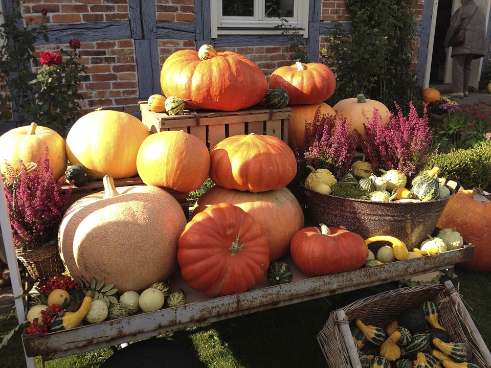 In most countries that celebrate a day of thanks, the day is closely tied with the idea of harvesting grains, fruits and vegetables. Each country celebrates this day differently, but it is all about coming together and sharing a feast.