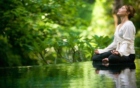 Understanding the art of mediation