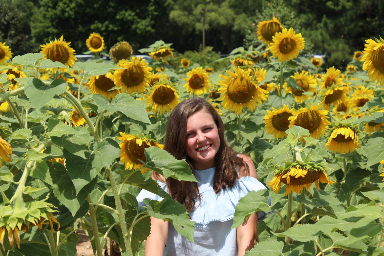 Soaking in the beauty of the sunflowers, sophomore Ashley Jean visits Dorothea Dix Park where they have sunflower fields open for many locals come and flock to. Being out in nature by hanging out at a park is just one of the many ways to get rid of summer boredom.
