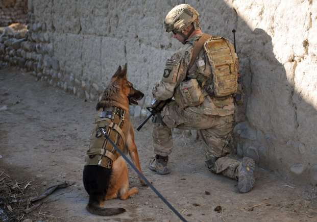 Patrolling the Afghan border with his dog, a United States troop searches for explosives. The explanation of U.S. military involvement in Afghanistan comes with a complicated history.