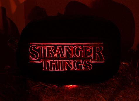 Conspiracy theorists believe that the show Stranger Things is based on the Montauk Project. The seasons that are currently available have made finding similarities between the two quite simple.