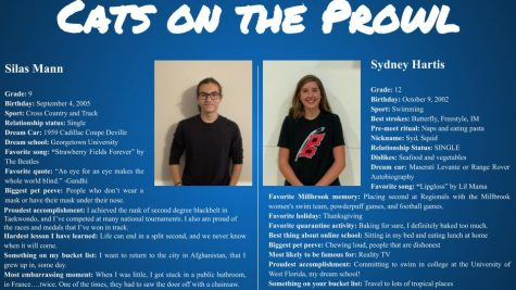 Cats on the Prowl: Silas Mann and Sydney Hartis
