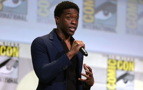 """Speaking at the 2016 Comic-Con International in San Diego, California, Chadwick Boseman displays the representation of Black people in the entertainment industry. Marvel announced the release of """"Black Panther"""" and the audience exploded with applause and enthusiasm for the highly-anticipated movie."""