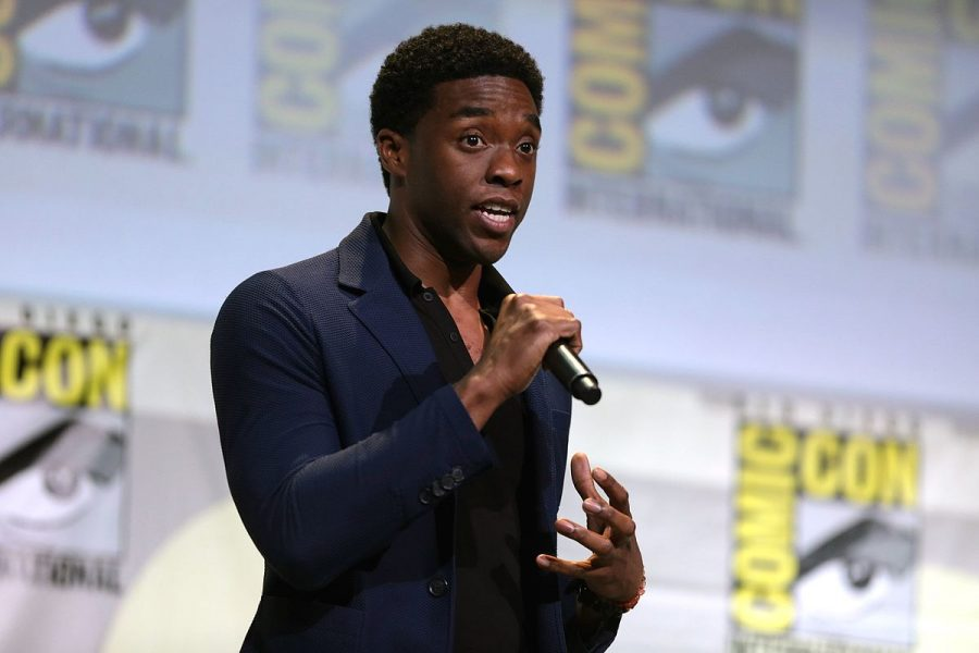 "Speaking at the 2016 Comic-Con International in San Diego, California, Chadwick Boseman displays the representation of Black people in the entertainment industry. Marvel announced the release of ""Black Panther"" and the audience exploded with applause and enthusiasm for the highly-anticipated movie."