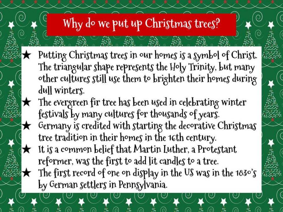 FYI: Christmas Trees
